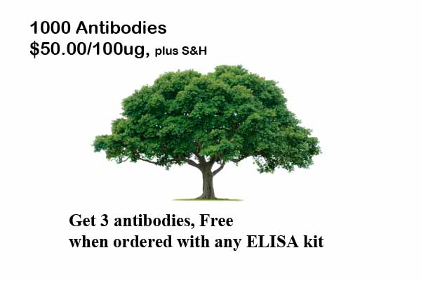 1000 Antibodies, only $50 each, 100ug Full Size